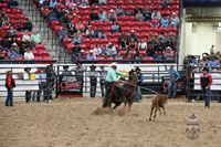Donovan Yazzie, Tie Down Roping 2017 INFR World Champion