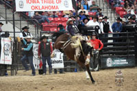 Jay Joaquin, Saddle Bronc 2017 INFR World Champion